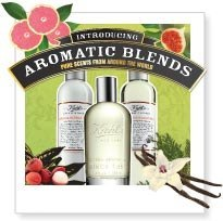 Aromatic Blends Collection